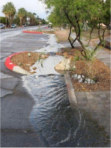 Stormwater can benefit a rain garden